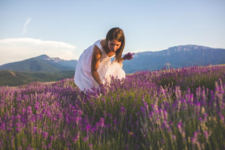 Lavender Hill Utah