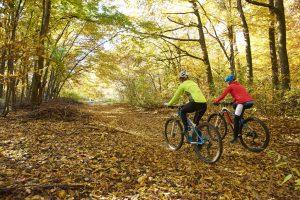 two woman biking in the woods